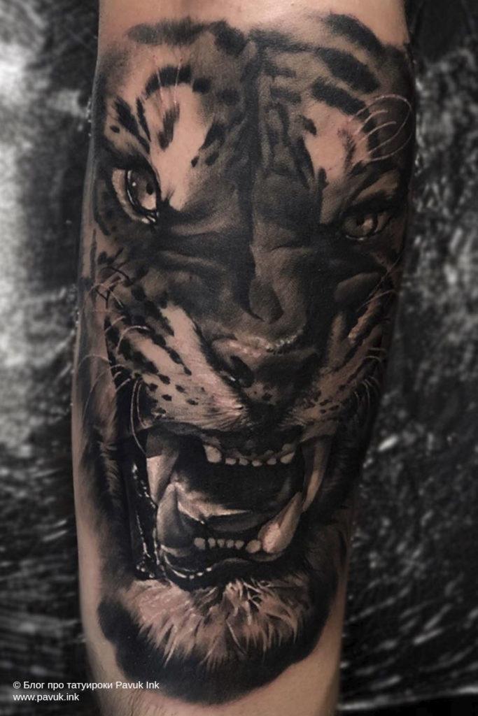 тату тигра 10