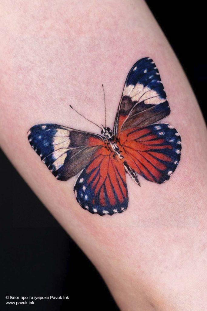 тату бабочка 15